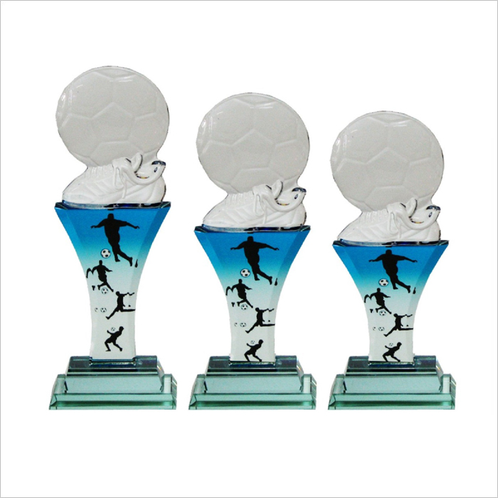 8113 - Exclusive Crystal Glass Awards