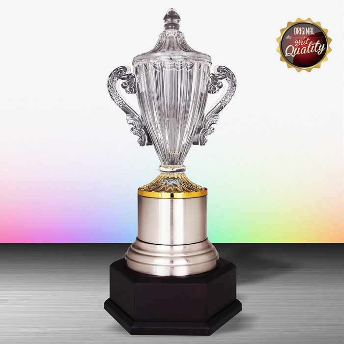 WS6177 - Exclusive White Silver Trophy With Crystal